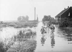 1954, Bottrop, Sturmshof