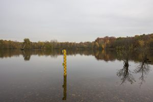 05.11.2015, Dinslaken, Lippegebiet, Rotbachsee