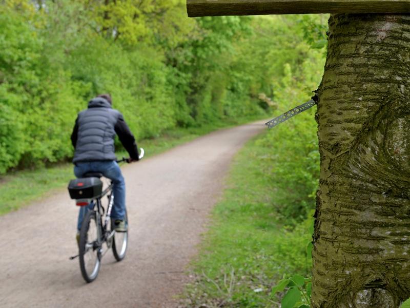 Per Drahtesel über die Römer-Lippe-Route