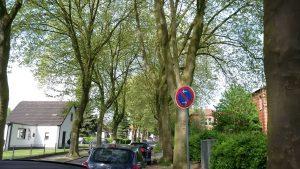"""Auch in der Rautenstrauchstraße gilt die Devise """"nur nicht erwischen lassen"""". Foto: Katrin Schnelle"""
