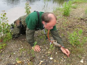 Diplom-Biologe Markus Sadowski bei der Arbeit vor Ort