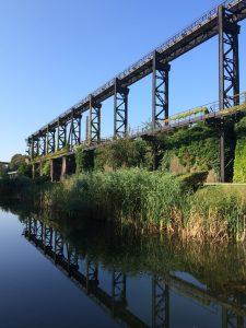 Die Alte Emscher in Duisburg: In diesem klaren Wasser schwimmen zahlreiche Fische. Foto: von mir...:-)
