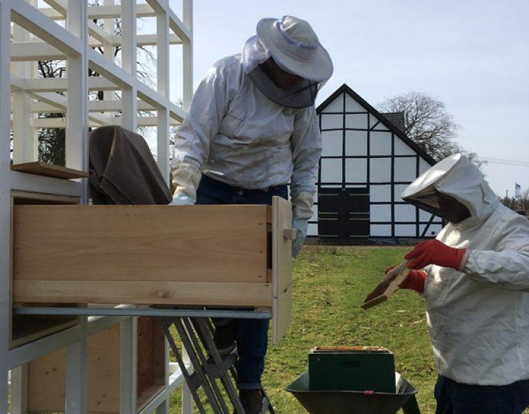 Am Emscherquellhof sind die Bienen los