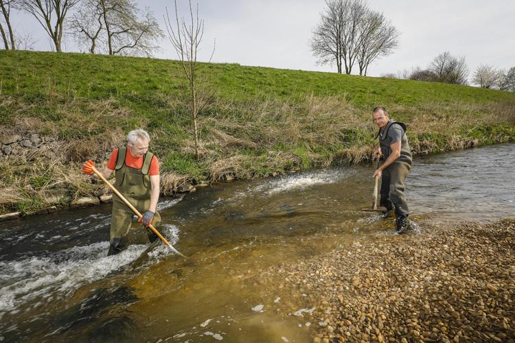 Ehrenamtliche helfen bei der Ausformung einer Kiesbank in der Seseke: neue Heimat für mehrere Fischarten. (Foto: Rupert Oberhäuser)
