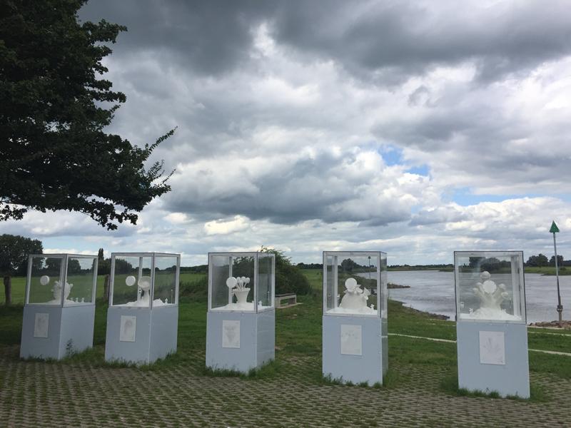 Peter de Cupere: Zeezoutsculpturen