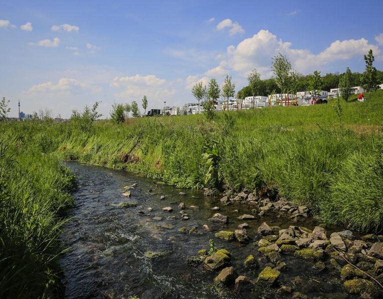 Nature for Water – Natur und Gewässer im Fokus
