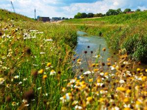 Wasser ist keine Ware, Wasserwirtschaft ist Daseinsvorsorge – beides gehört in öffentliche Hand. Foto: Rupert Oberhäuser/EGLV