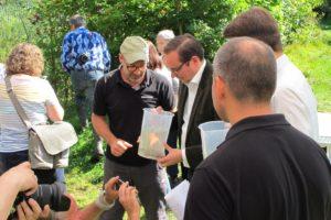 Gunnar Jacobs (m.) mit dem Essener Oberbürgermeister Thomas Kufen beim Einsetzen der Emscher-Groppe in den Borbecker Mühlenbach.