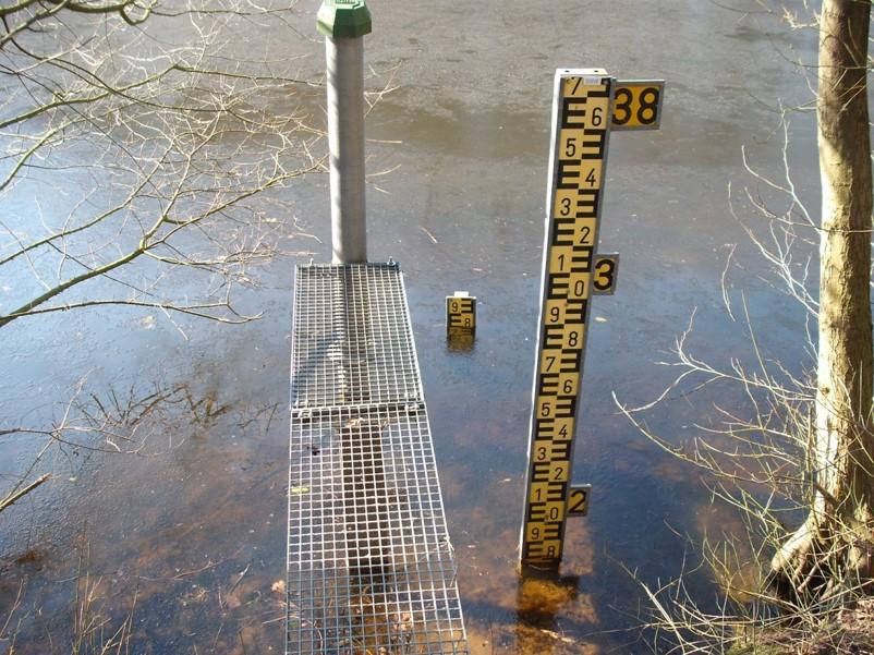 Hitzesommer 2018 – aktuelle Lage an unseren Gewässern